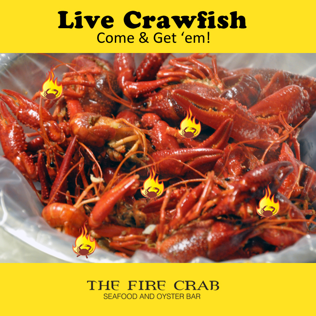 Live Crawfish Still in Stock! | The Fire Crab